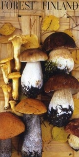 Erik Bruun poster - Mushrooms in August