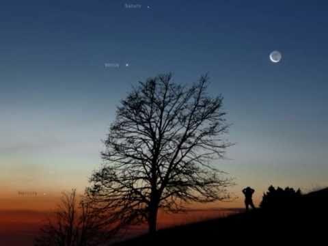David Whitfield - Gypsy Moon