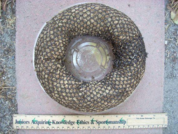 Forma di succulenti centrotavola muschio con di SucculentSalon