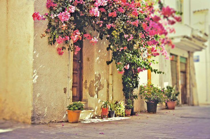 Även gränderna i Kos stad kan bjuda på rik blomsterprakt. | http://halsoresor.se/ #hälsa #hälsoresor #Strandgårdens_Hälsoresor #Kos