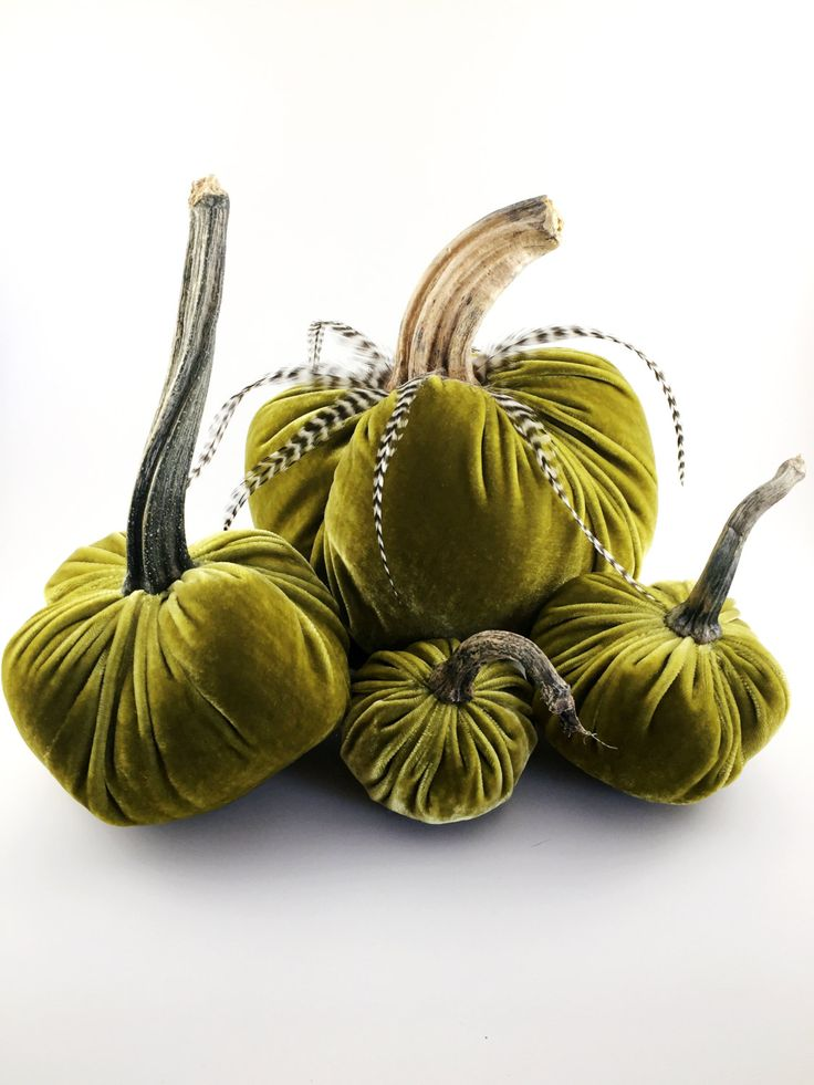 The 25 best pumpkin stem ideas on pinterest pumpkin for Pumpkin stems for crafts