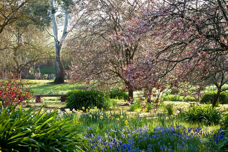 Filled with crab-apples and old fruit trees, this section of the historic garden is known as the 'wild garden' of this western Victorian property. Photography: Claire Takacs | Story: Australian House & Garden