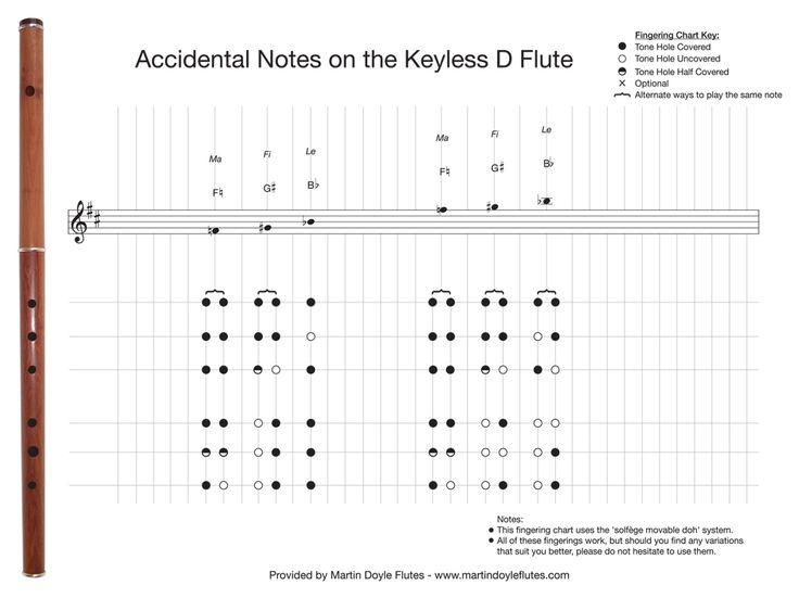 Irish Flute Tutor Books New Era Of Wiring Diagram