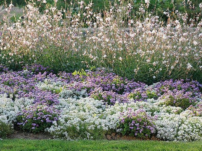 E. Brenckle - Rustica - Parc floral de Paris