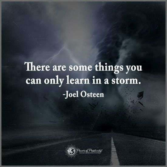 There are some things you can only learn in a storm - Joel Osteen Quote