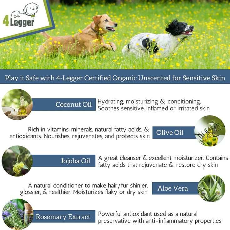 Is Emu Oil In Dog Food Safe For Dogs