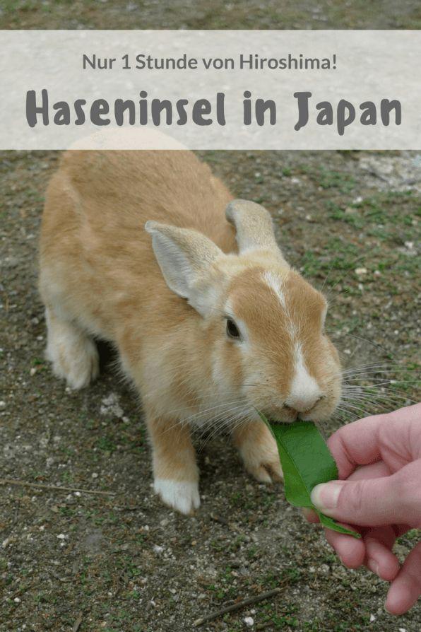 Haseninsel_Japan_Hiroshima_Okunoshima