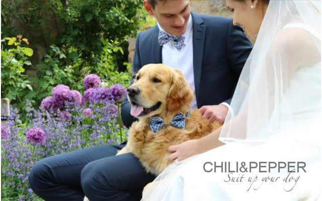 "The happy couple with their dog! Balou is wearing our bow tie ""Good Luck"" ! www.suitupyourdog.de"