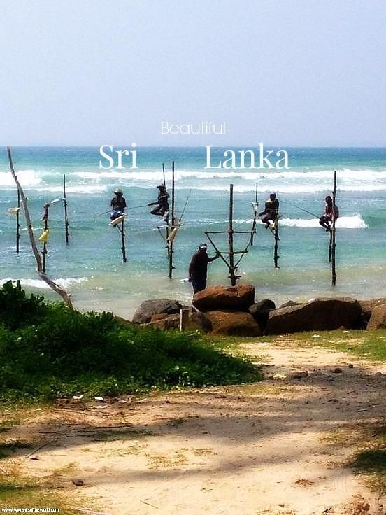 Sri Lanka- Best Of The South West Coast and Hill Country