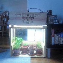 DIY indoor greenhouse