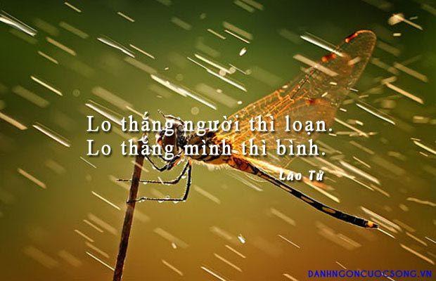 Lo thắng người thì loạn. Lo thắng mình thì bình. - Lão Tử  Read more: http://danhngoncuocsong.vn/danh-ngon/lo-thang-nguoi-thi-loan-lo-thang-minh-thi-binh.html#ixzz3JHkwgusF