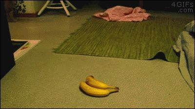 Banana for sWOAH!!!! Enjoy more anim gifs http://captainsomuch.tumblr.com/