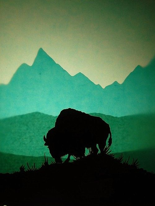 Buffalo #NWvintage  I imagine this is near the Tetons, love this image