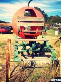 La Grange, TX - Cinderella Pumpkin Coach