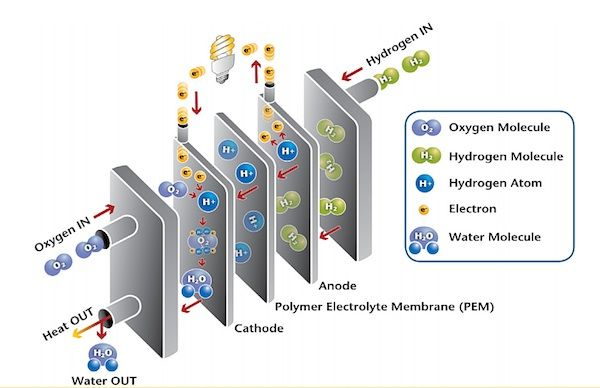 So what just is a fuel cell, anyway?  Why are governments, reclusive businesses and scholarly institutions collaborating to make these fuel cells? Carbon cells make electrical devices quietly and efficiently, without soiling. Different superpower sources that use fossil fuels, the by-products from an operating fuel cadre are utility and food.