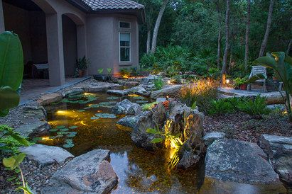 25 Best Ideas About Pond Lights On Pinterest Fish Ponds Garden Waterfall And Small Backyard