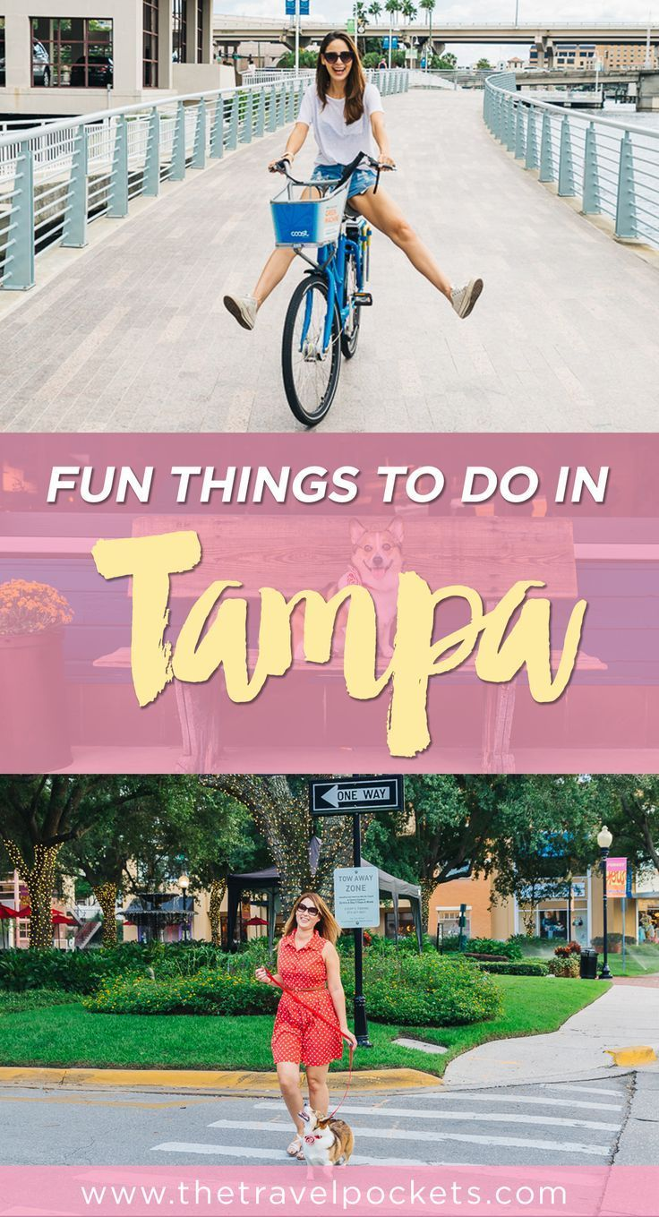 32 best florida lower gulf coast with kids images on pinterest 8 fun things to do in tampa florida geenschuldenfo Image collections