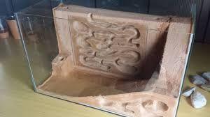 """Résultat de recherche d'images pour """"messor barbarus beton cellulaire"""""""