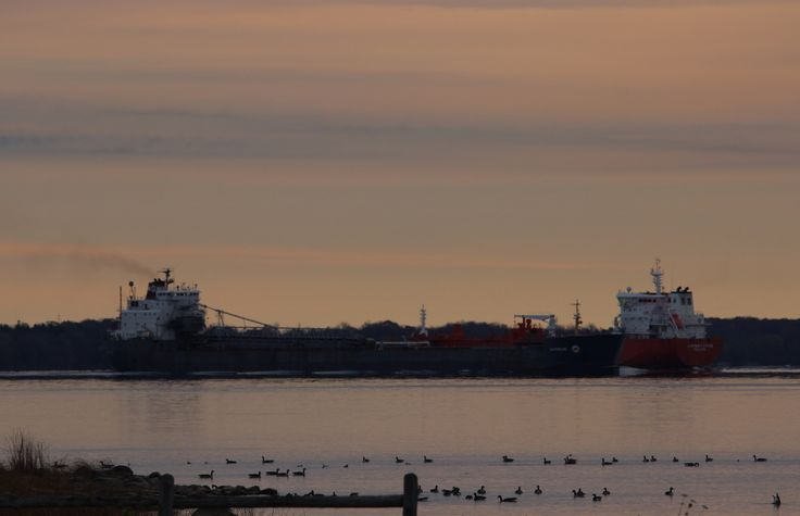 Algowood upbound, Adfines Star downbound 7:40 passing Wolfe Is, Carleton Is. Sat. morn.