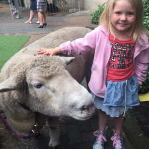 Little Bo Peeps has a gorgeous barnyard of friendly animals and ponies available for petting, feeding, cuddling and riding for all occasions.