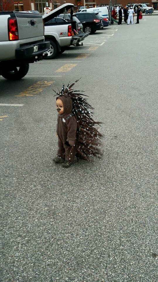 This kid as a porcupine.
