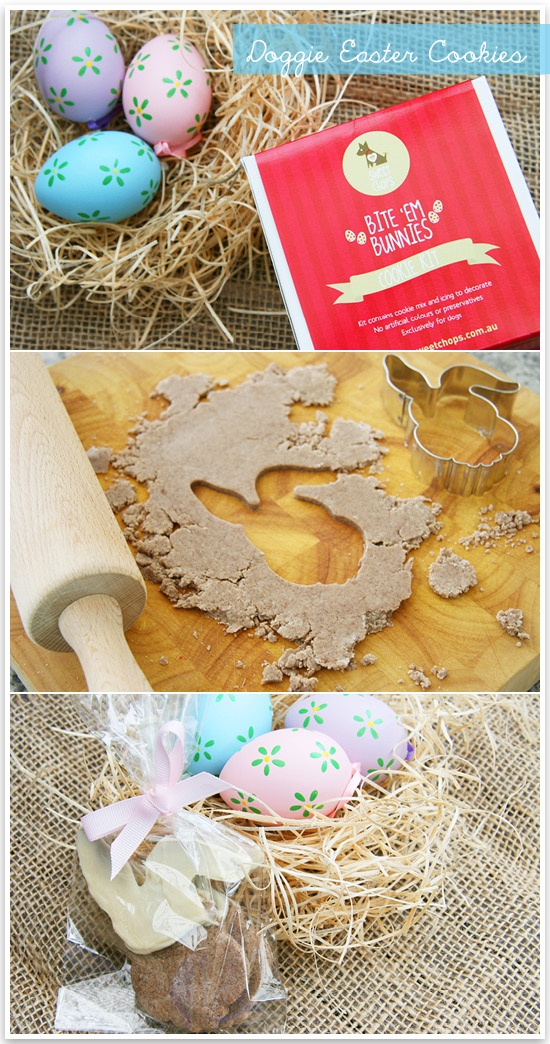 30 best hoppy easter easter ideas for dogs images on pinterest diy dog easter cookies negle Images