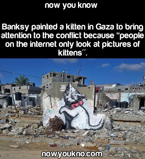 Source for more facts follow NowYouKno Other Banksy paintings in Gaza and Palestine:
