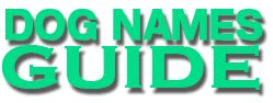 Girl & Female Dogs Names Guide & Boy A to Z