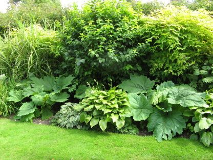 Gärten in England Old Rectory Sudborough