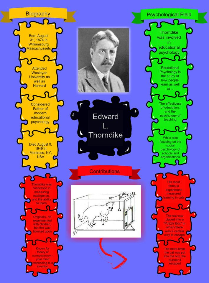 """thorndike s law of effect Operant conditioning is based on thorndike's 'law of effect' (mcleod, 2014) which is really basic according to the website educational portal, it teaches us that according to the """"law of effects"""", if we are rewarded for something we'll do it more often (goodfriend, 2014) operant conditioning ."""