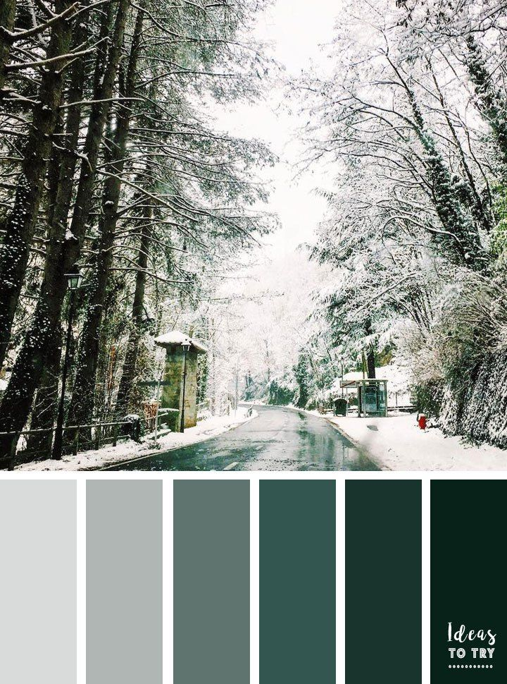 Pine Green Color Inspiration Winter Color Scheme Winter Color Palette Pine Green Winter Color