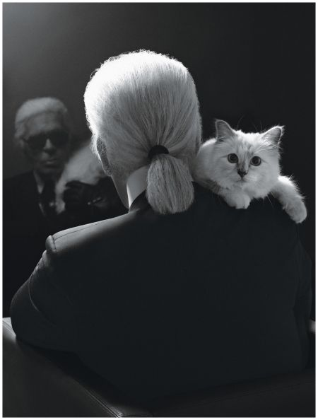 """I never expected to fall in love like this, with a cat."" Karl's self-portrait with Choupette."