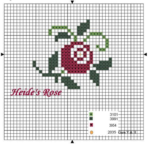 Heide's-Rose