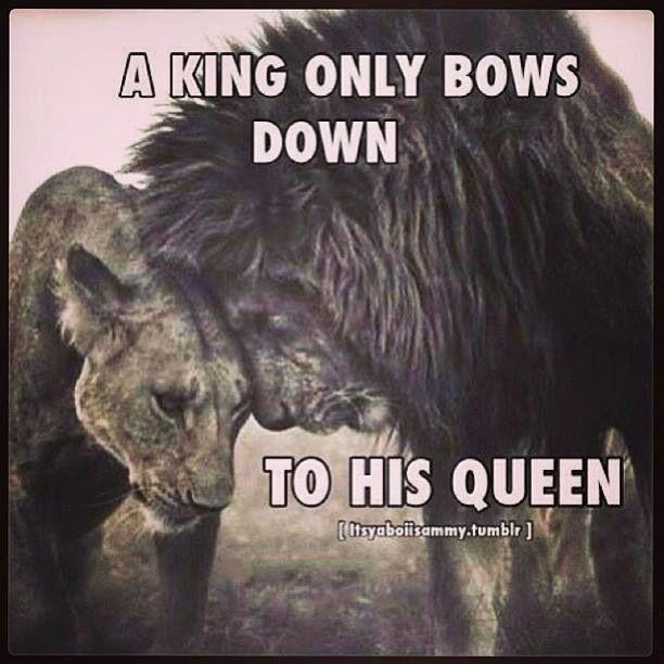 Treat Your Man Like A King Quotes Nemetasaufgegabeltinfo