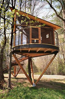 Elegant Tree House Design Ideas