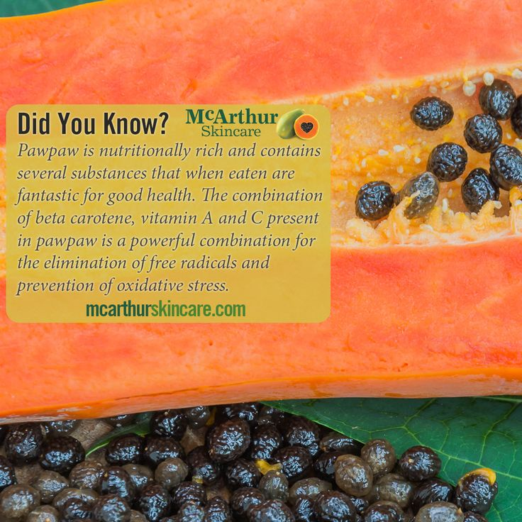 Did you know? Pawpaw/Papaya  Pawpaw is nutritionally rich and contains several substances that when eaten are fantastic for good health. The combination of beta carotene, vitamin A and C present in pawpaw is a powerful combination for the elimination of free radicals and prevention of oxidative stress.  Visit our website at http://mcarthurskincare.com/about-pawpaw/ for more details.  #mcarthurskincare #pawpaw #papaya #papain #papaw #caricapapaya #australiangrown #petrochemicalfree #notoxins…