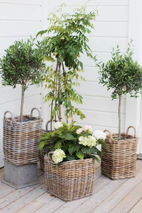Planting in baskets gives a natural feel and look to your porch and garden.