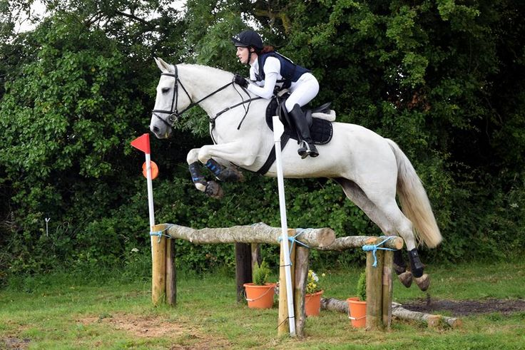 Inside Track Eventing - the journey of an amateur rider and her patient horse into the world of Eventing in Ireland!