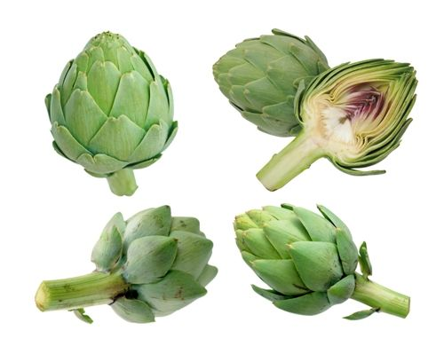 """We all dread the word """"cancer"""" and if you too are one of us, start eating Artichokes from today. This is because unlike other veggies we talk about or know off, the humble Artichoke would have the strength and powers to fight the dreaded cancer. Today we would like to help you understand the importance [...]"""