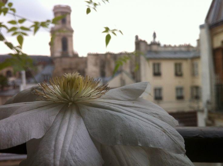 Les 165 meilleures images propos de balcon jardin suspendu sur pinterest jardins toits for Paysagistes paris