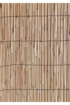 Reed Screen - ideal for sectioning off a modern garden