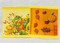Disktrasa 2-pack, Pumpor, Du hittar dessa och fler i min Tradera-butik  http://www.tradera.com/profile/items/3715589/starizojag