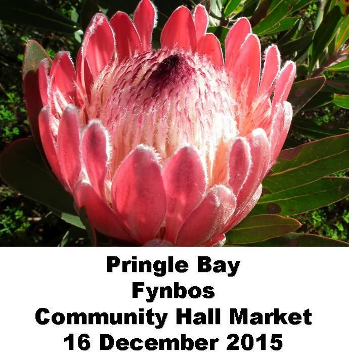 Last Meet and Greet for 2015. Make use of this opportunity to stock up on your Axhilirit and Rejuvinit products and to visit and chat with the Healing Oil Products Team at the Pringle Bay Community Hall on 16 December between 9h30am and 2h30pm. www.healing-oil.co.za 072 588 9090