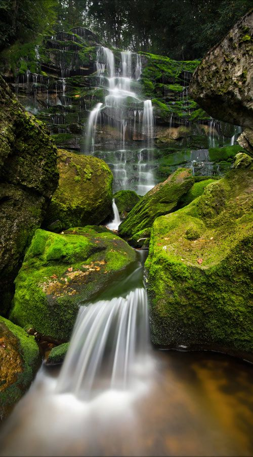 Waterfall, West Virginia - This is why I love WV. Beautiful state.