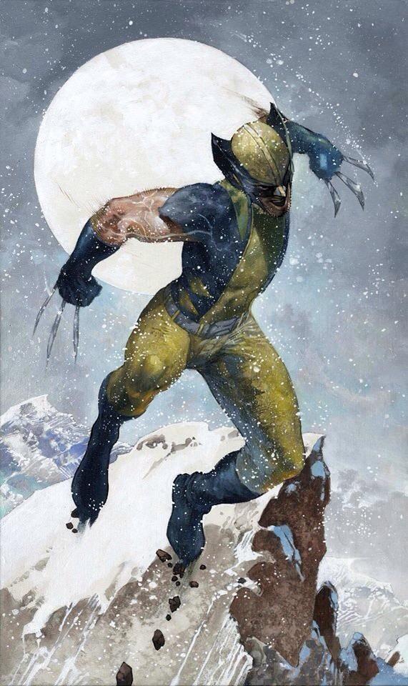 Wolverine by Simone Bianchi #XMen #XForce