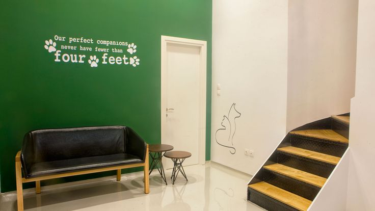 Waiting area of veterinary clinic