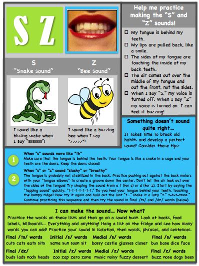 S/Z Articulation Handout from Ms. B the SLP