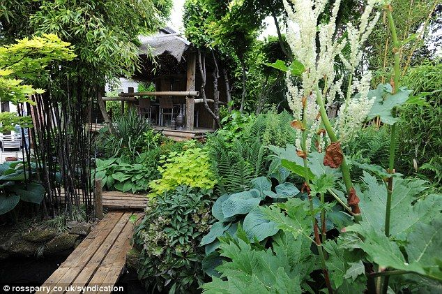 Secret garden: Nick Wilson, 57, has created this stunning jungle garden at his home in Leeds, Yorkshire