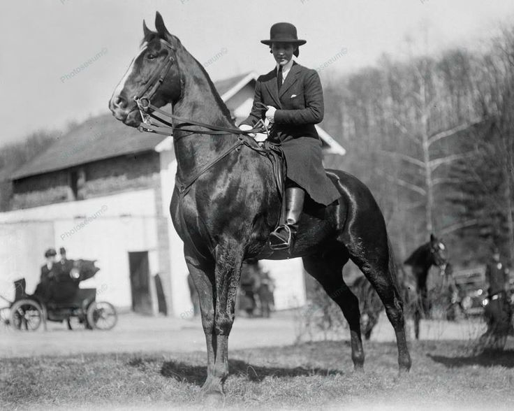 Equestrian Lady Horse Rider 1914 Vintage 8x10 Reprint Of Old Photo