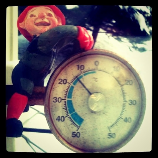Had to take a pic of this little guy at my aunt and uncles place in Oslo. This is from Christmas Eve 2010. Was a little nippy outside...